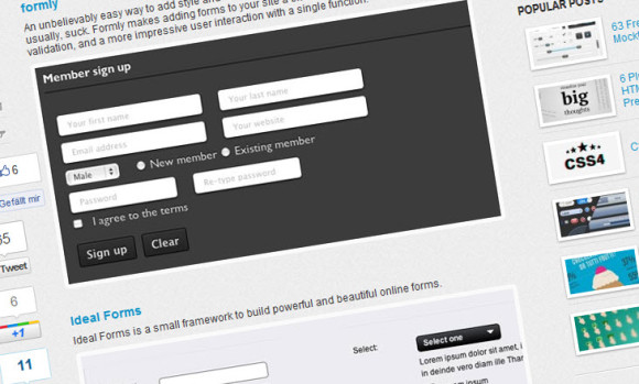 Beautiful and consistent web forms with jQuery